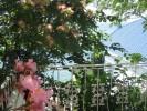 Вилла «Луиза» - частный пансионат в Рыбачьем