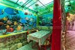 Царство зеленой прохлады, Рыбачье