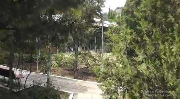 Зеленая зона в поселке Рыбачье